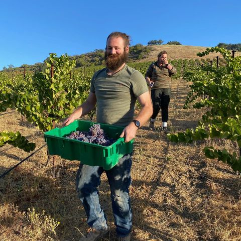 Harvest is upon us and we couldn't be happier! We picked our first grapes of the season Friday, a bit of Grenache that will kick off of our rosé  #Harvest #PasoRobles #MAHAEstate #Grenache #StaffPick